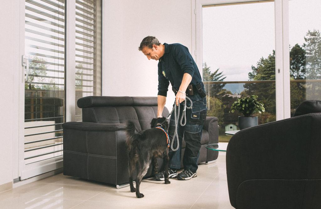 page punaise de lit a a. Black Bedroom Furniture Sets. Home Design Ideas