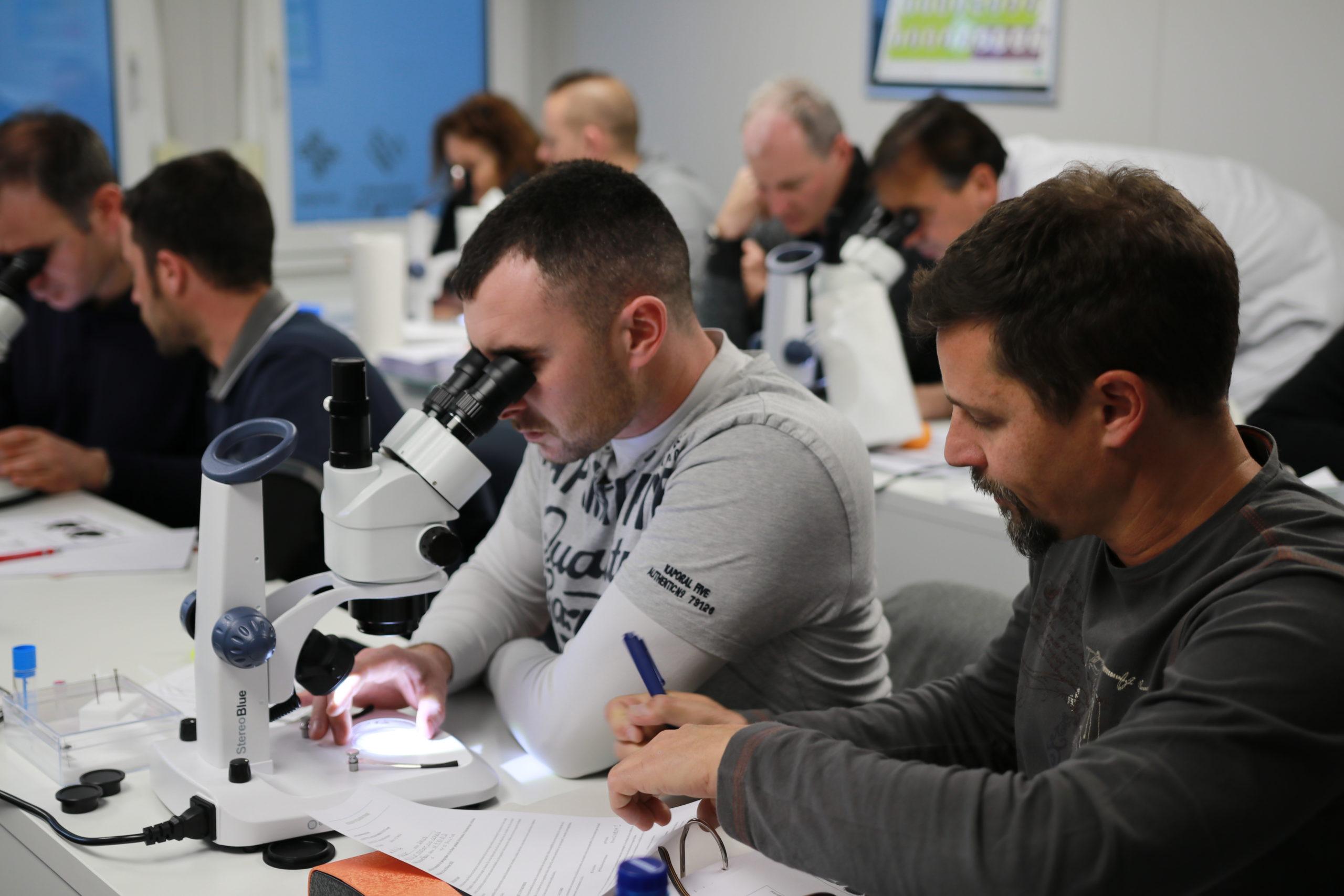Formation d'entomologie urbaine à destination des professionnels
