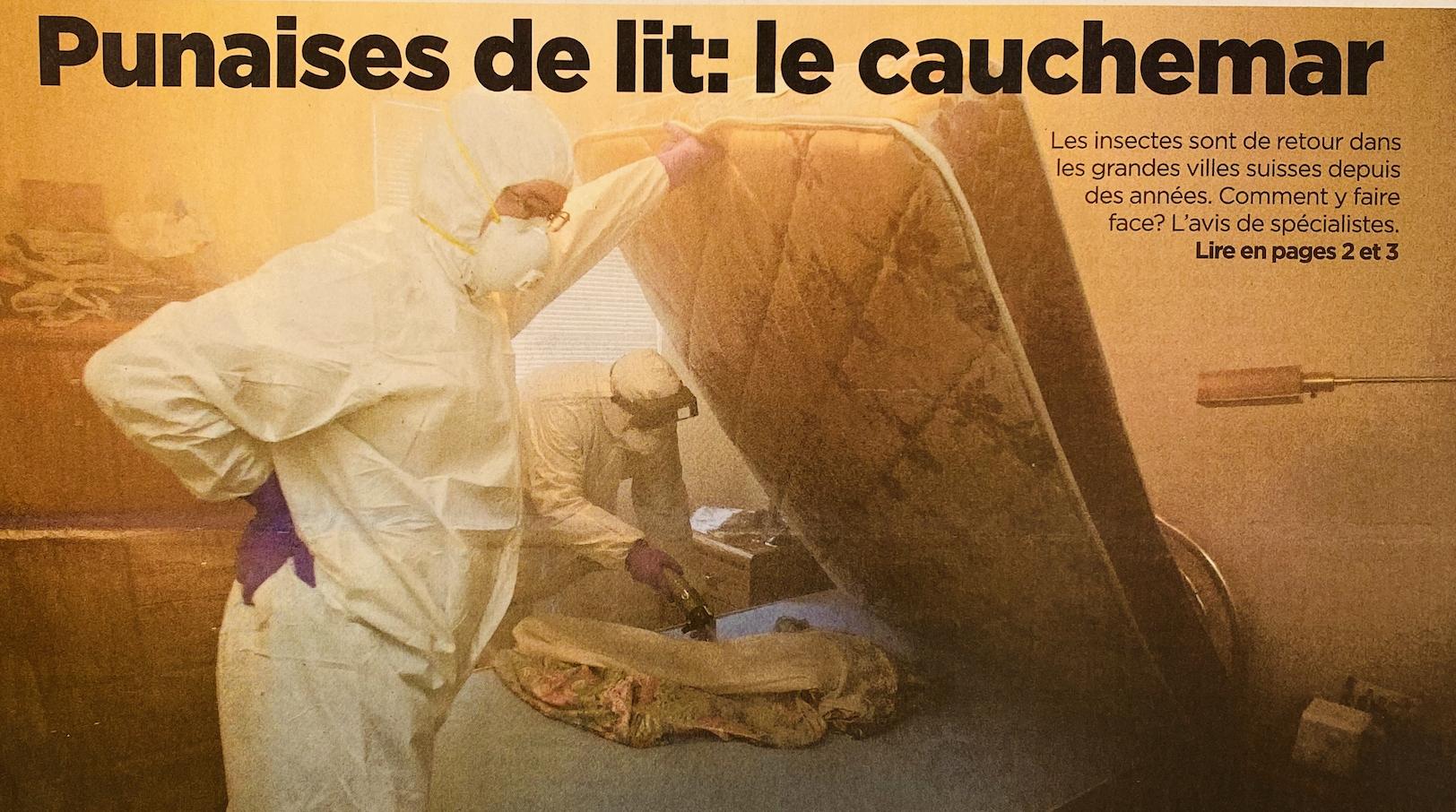 Punaises de lit : le cauchemar. Une enquête de la Tribune de Genève
